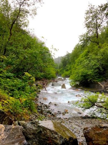 2378 gold creek